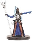D&D Miniatures - Click to view the stats for Drow Wizard Miniature