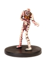 D&D Miniatures - Click to view the stats for Mummy Miniature
