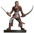 D&D Miniatures - Click to view the stats for Wood Elf Ranger Miniature