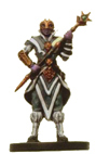 D&D Miniatures - Click to view the stats for Spellscale Sorcerer Miniature